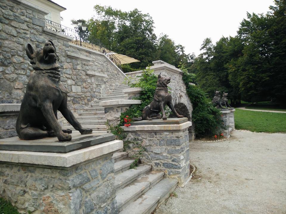 Lubiana Parco di Tivoli - statue cani